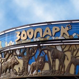 Зоопарки Саракташа